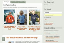 Spailpin.com home page, second part preview